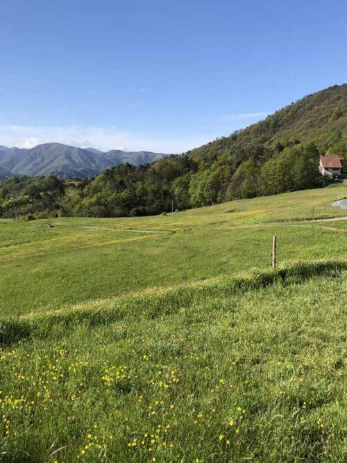 Parco_Beigua_Dettaglio_Clienti_Mercomm_Agenzia_Comunicazione